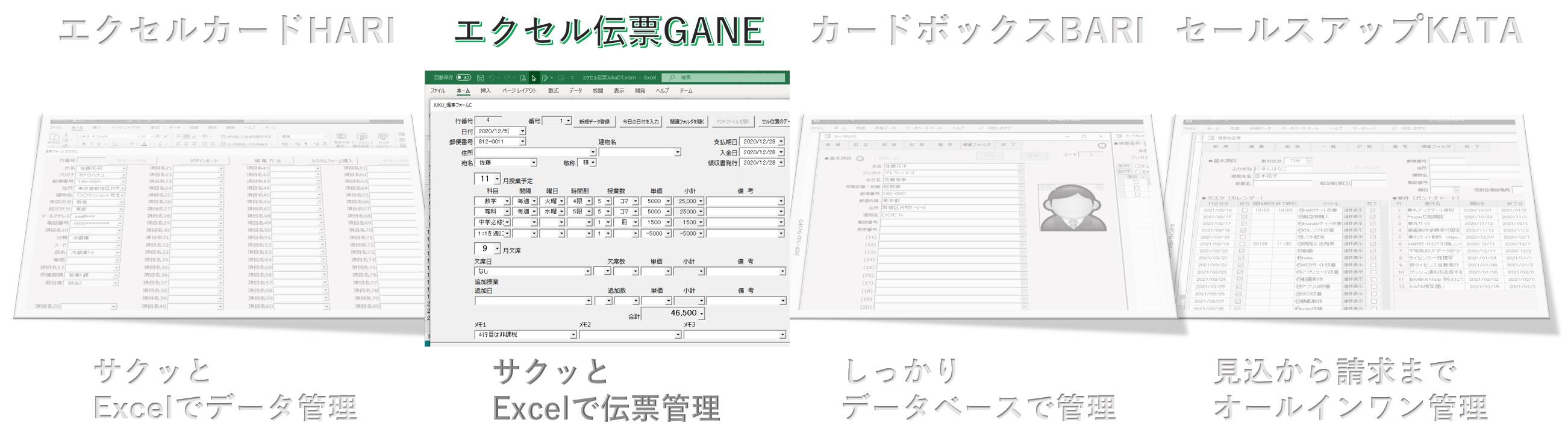 エクセル伝票GANE,伝票管理ソフト